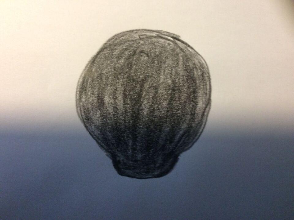 Een donkere bol gezien zeker een minuut en plotseling weer weg . De zelfde als o foto