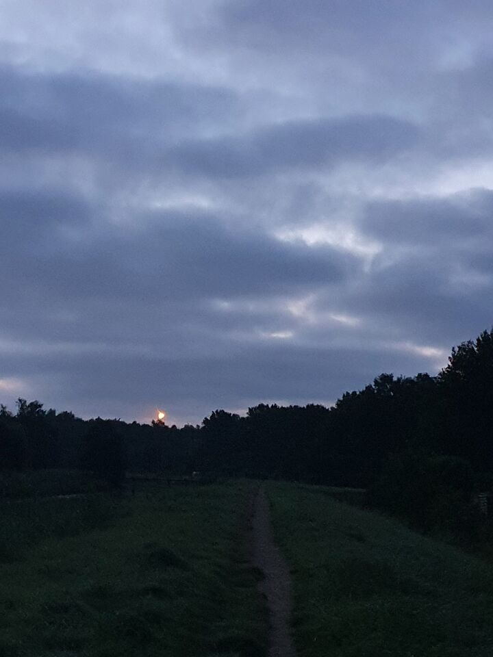 2 lichten die op gelijke afstand van elkaar bewogen. 1 bal net op de foto foto