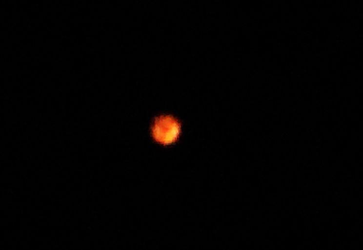 Oranje bol foto