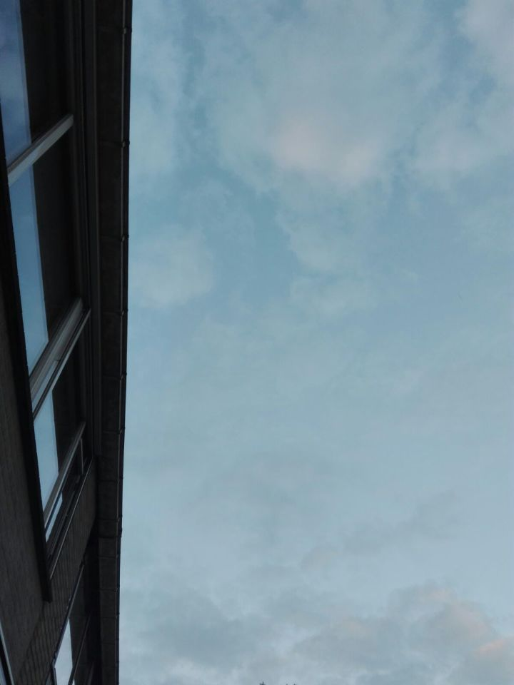 Meerdere ( 3) zwarte bollen die recht omhoog gingen boven Rotter foto