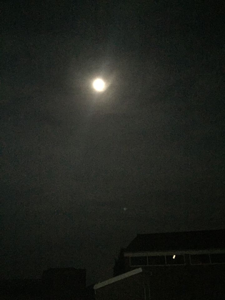 Zag onder de maan een ronde bol foto